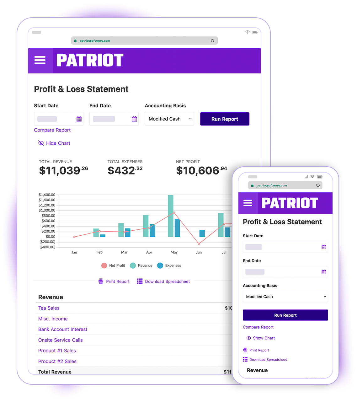 Patriot Software's Profit and Loss Statement