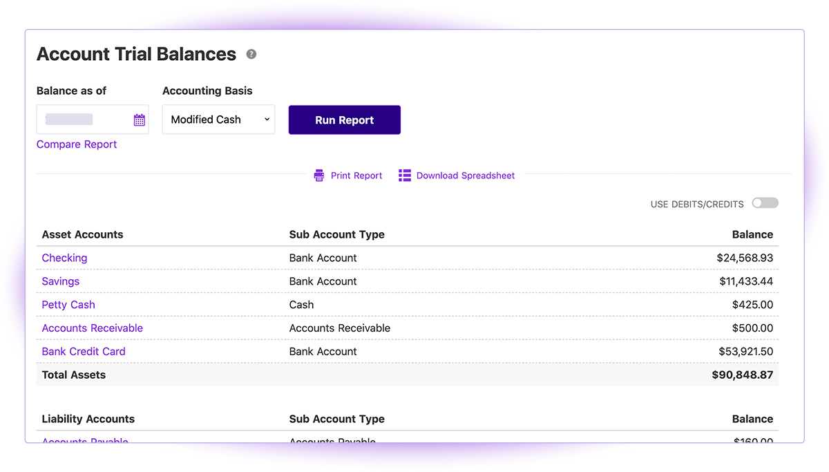 Account Trial Balances Report